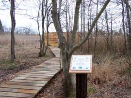 Conservation blind for viewing wildlife in the coastal wetlands of the Lighthouse Center for Natural Resource Education