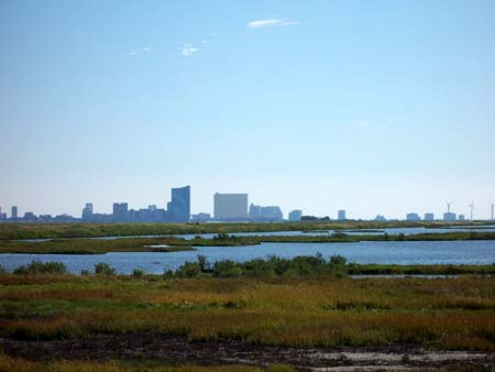 Atlantic City skyline as seen from Forsythe National Wildlife Refuge in Brigantine