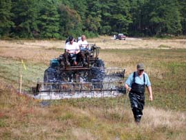 cranberry harvest - the harvesters act like horizontal egg beaters; the motion removes the cranberries from the vines