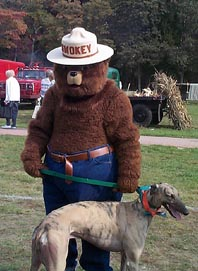 Maxwell G. Hound Meets Smokey Bear