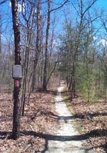 The Batona Trail, a favorite of hikers.