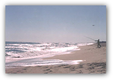 Surf fishing in the Atlantic Ocean from the sugar-sand beaches of Long Beach Island