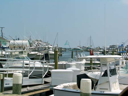 Holiday Harbor in Waretown NJ offers a multitude of boating for anglers, from  bay fishing to overnight canyon fishing for tuna, swordfish  and shark.